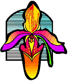 animated-orchid-image-0009