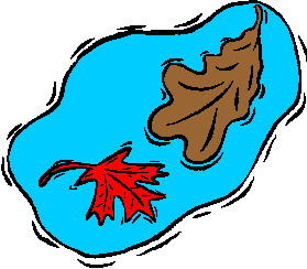 animated-leaf-image-0001