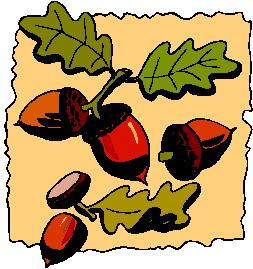 animated-leaf-image-0016