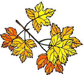 animated-leaf-image-0068