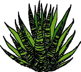 animated-leaf-image-0074