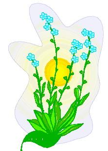 animated-leaf-image-0102