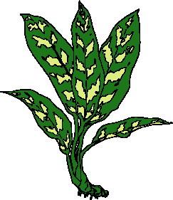 animated-leaf-image-0107