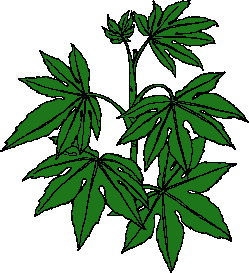 animated-leaf-image-0111