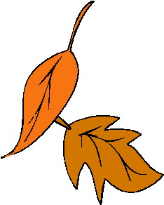 animated-leaf-image-0117
