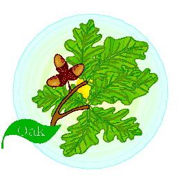 animated-leaf-image-0120