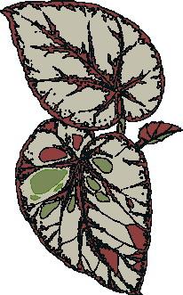 animated-leaf-image-0122