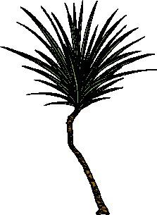 animated-leaf-image-0132