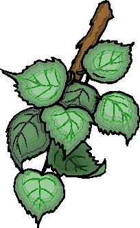 animated-leaf-image-0137