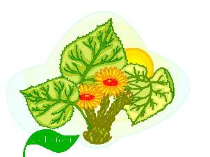 animated-leaf-image-0144