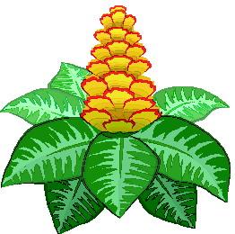 animated-leaf-image-0171