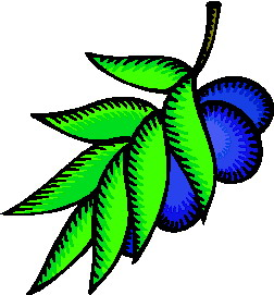 animated-leaf-image-0175