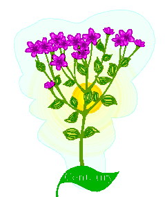 animated-leaf-image-0176