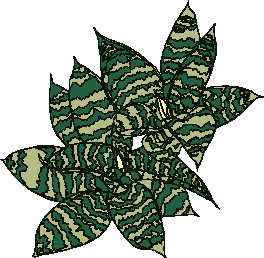 animated-leaf-image-0185