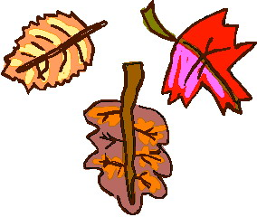 animated-leaf-image-0189