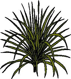 animated-leaf-image-0203