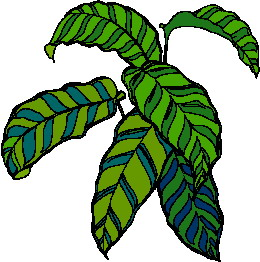 animated-leaf-image-0206