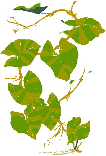 animated-leaf-image-0239