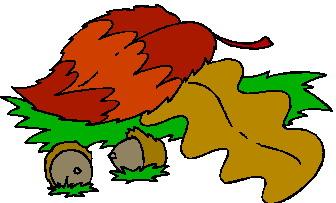 animated-leaf-image-0254