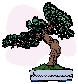 animated-bonsai-tree-image-0013
