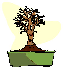 animated-bonsai-tree-image-0018