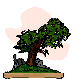animated-bonsai-tree-image-0022