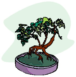 animated-bonsai-tree-image-0024