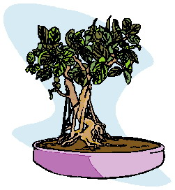 animated-bonsai-tree-image-0025