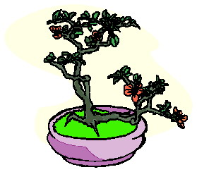 animated-bonsai-tree-image-0026