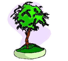 animated-bonsai-tree-image-0027