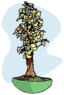 animated-bonsai-tree-image-0028