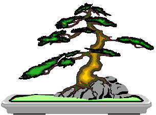 animated-bonsai-tree-image-0029