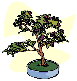 animated-bonsai-tree-image-0032