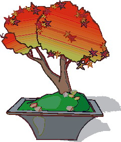 animated-bonsai-tree-image-0033