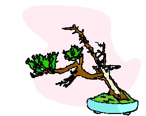 animated-bonsai-tree-image-0034