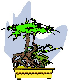 animated-bonsai-tree-image-0039