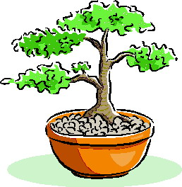 animated-bonsai-tree-image-0040