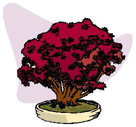 animated-bonsai-tree-image-0044