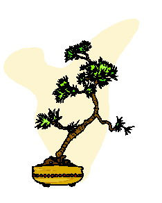 animated-bonsai-tree-image-0046