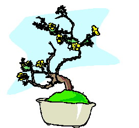 animated-bonsai-tree-image-0047