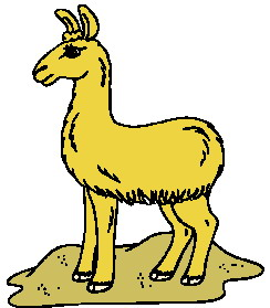 animated-lama-image-0010