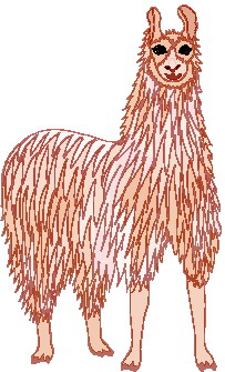 animated-lama-image-0013