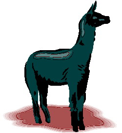 animated-lama-image-0015