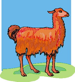 animated-lama-image-0019