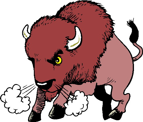 animated-buffalo-image-0003