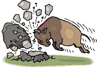 animated-buffalo-image-0056
