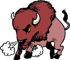 animated-buffalo-image-0064