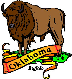 animated-buffalo-image-0070