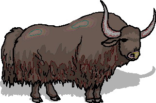 animated-buffalo-image-0073