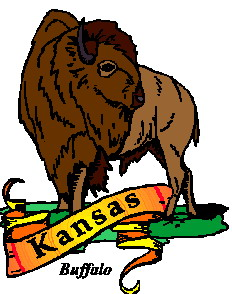 animated-buffalo-image-0074